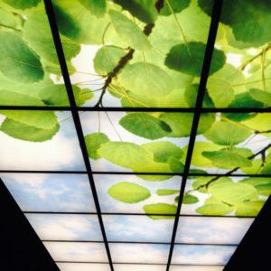 Plafond backlitfolie mega elektra